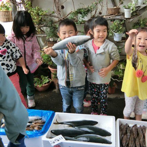 お魚教室があったよ。