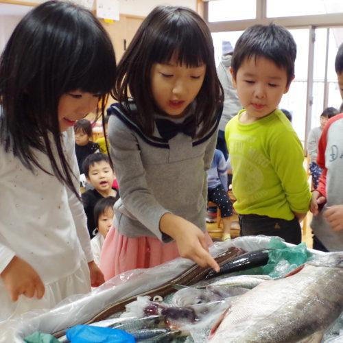 お魚教室がありました!