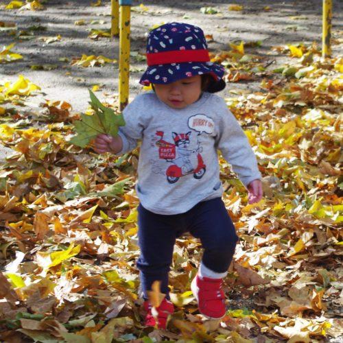 秋のお散歩。【パリス錦町保育園】